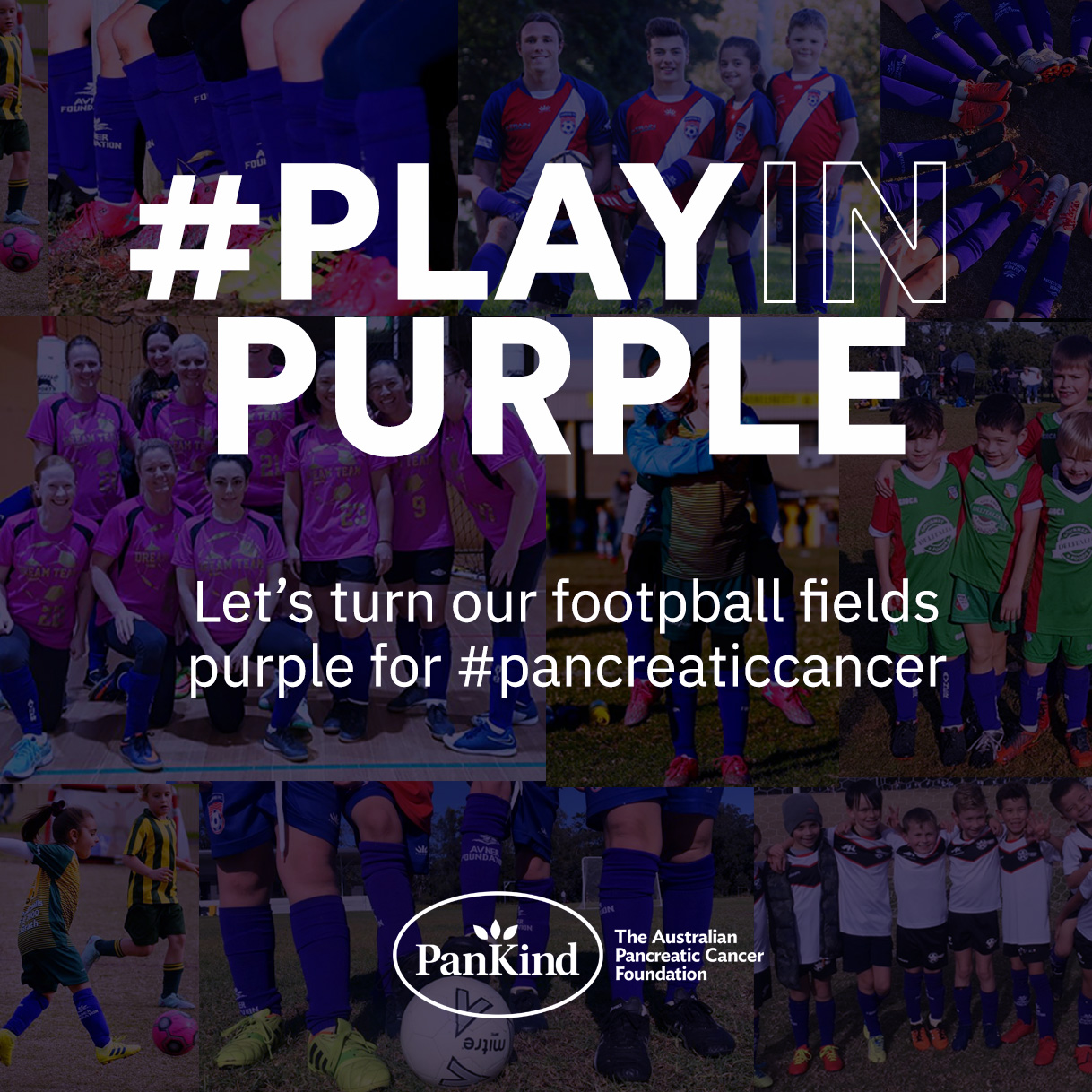 Image 1 for PlayInPurple Campaign for Pancreatic Cancer