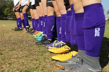 Image 1 for Purple Socks Campaign for Pancreatic Cancer